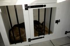Houten Hondenbench met ruimten voor 3 herders honden